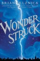 Go to record Wonder struck : a novel in words and pictures