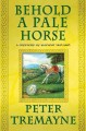 Go to record Behold a pale horse : a mystery of ancient Ireland