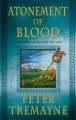 Go to record Atonement of blood : a mystery of ancient Ireland
