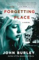 Go to record The forgetting place