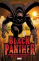 Go to record Black Panther : Who is the Black Panther?