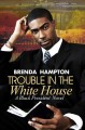 Go to record Trouble in the White House : a black president novel