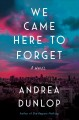 Go to record We came here to forget : a novel