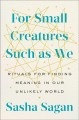 Go to record For small creatures such as we : rituals for finding meani...