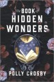 Go to record The book of hidden wonders : a novel