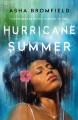 Go to record Hurricane summer
